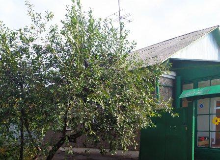 Дом 260.00-Кв.м. на участке 10.00 сот.