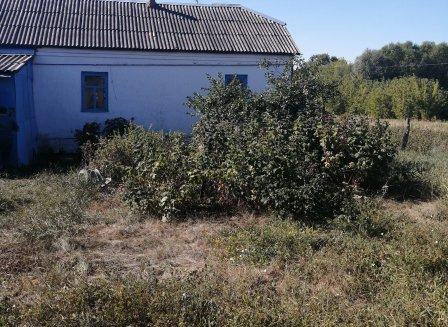 Дом 40.00-Кв.м. на участке 40.00 сот.